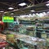 香港・西貢おすすめのレストランと海鮮グルメの人気メニューを紹介